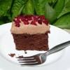 Coconut Flour Chocolate Cake & Cupcakes (GF)