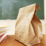 Test Kitchen Showdown: Which Lunch Box Food Storage System is Right for Your Family?
