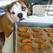 Puppies LOVE Real Food too!