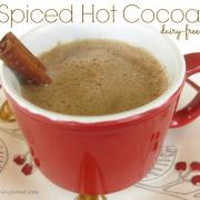 Ring in the New Year with Spiced Hot Cocoa!