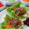 Asian Style Wraps {Whole30}