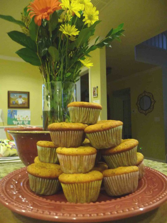 Lemon Poppy Mini-Muffins