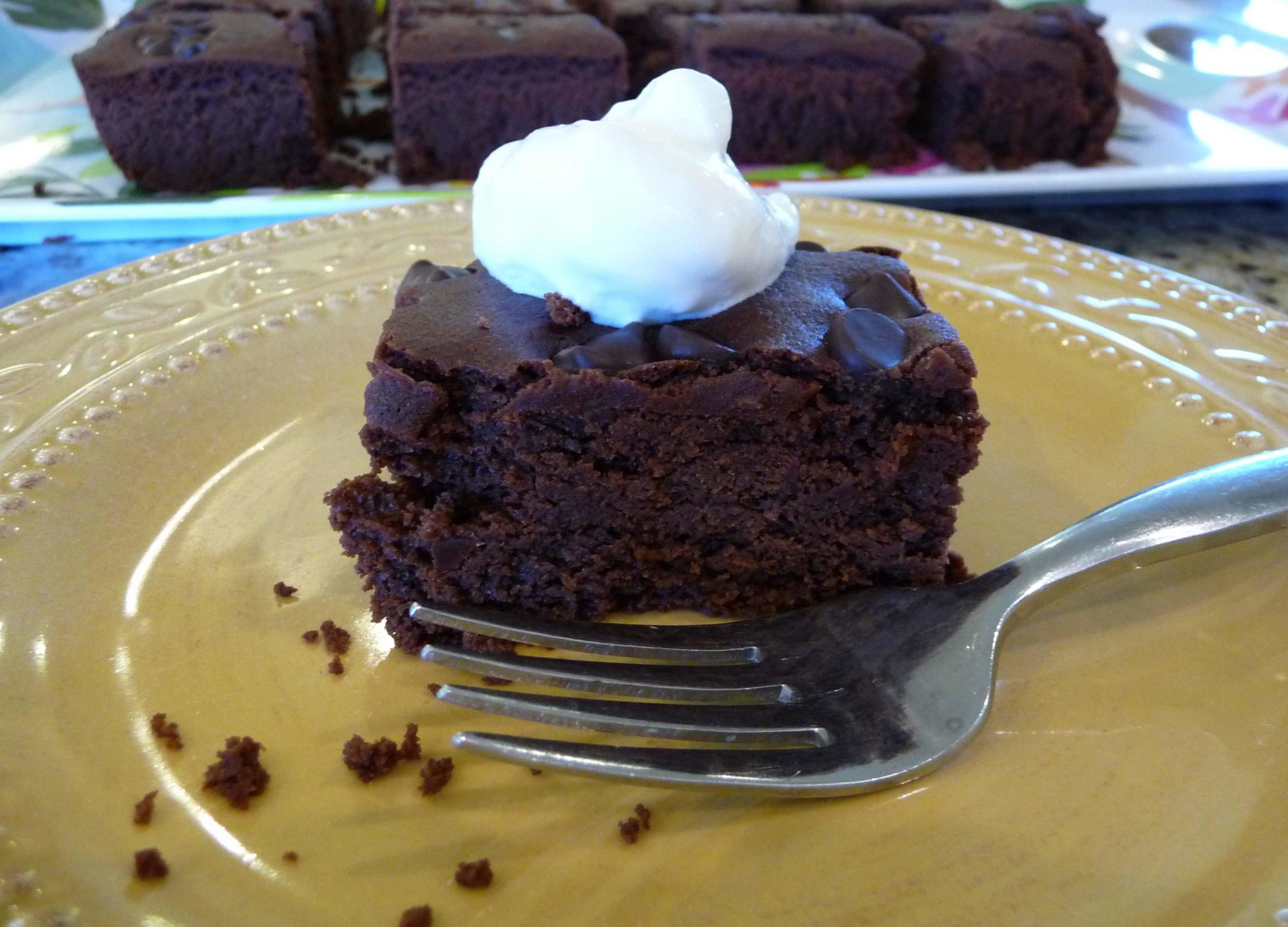 Coconut Flour Brownie Cake (GF)