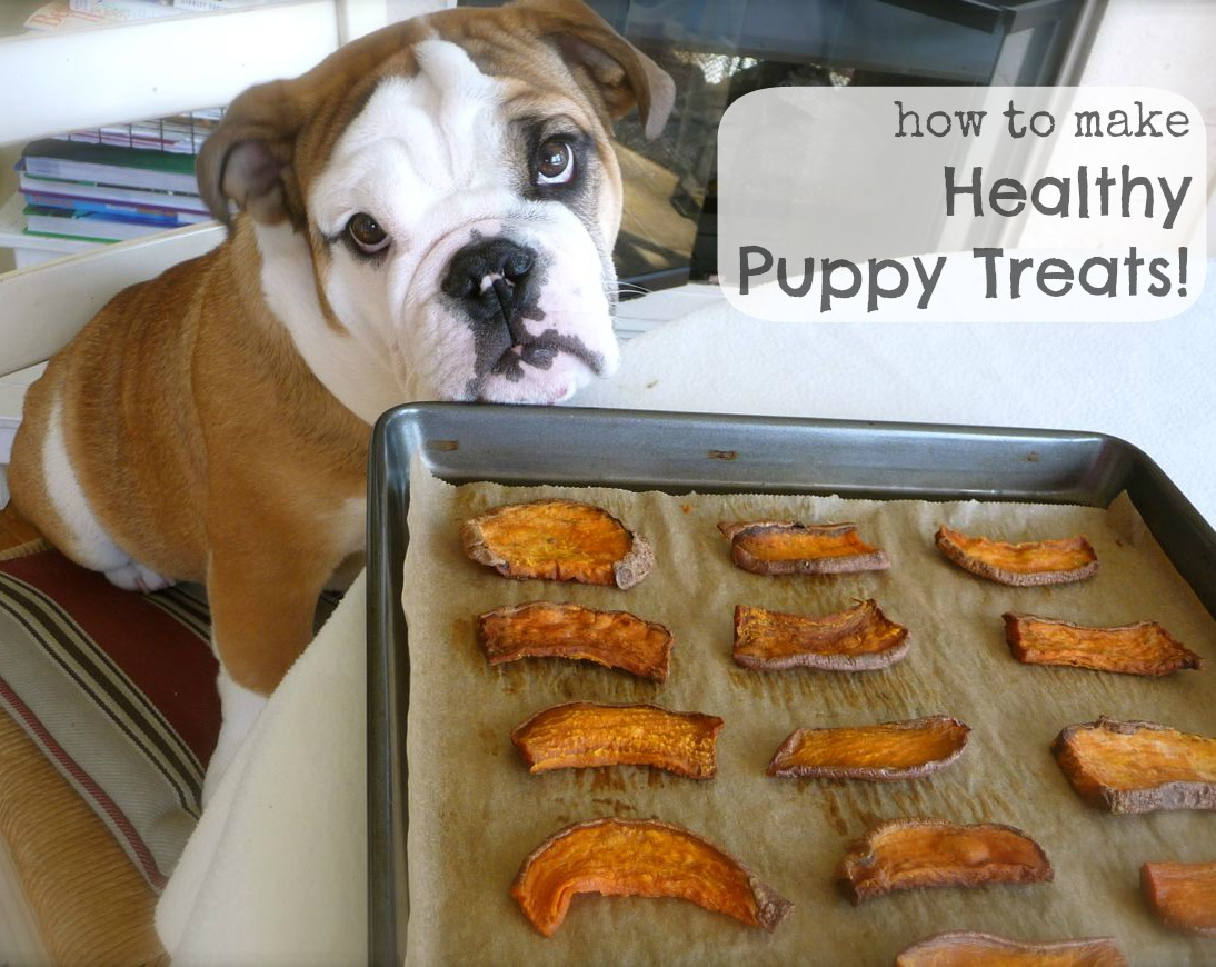 How to Make Healthy Puppy Treats!