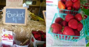 Prepicked Strawberries Pricing