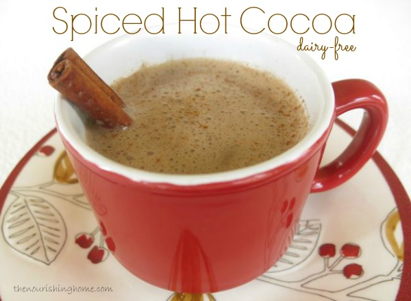 Spiced Hot Cocoa (DF)
