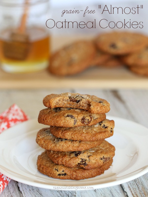 Grain-Free Almost Oatmeal Cookies