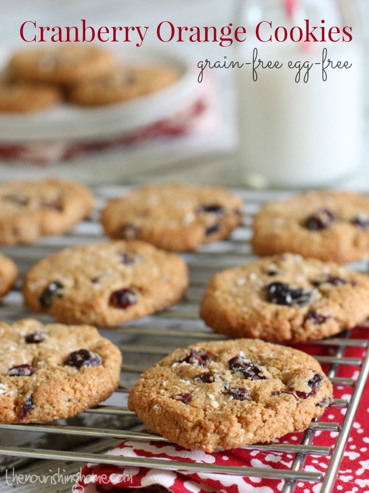There's nothing better than doing some holiday baking with family. And these grain free cranberry orange cookies are the perfect thing to make with everyone from old to young!